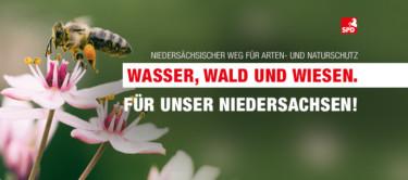 As fb titelbild kampagnenbiene